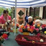 Animazione villa del sole casa per anziani tra bologna e firenze