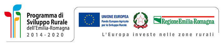 Unione Europea - Regione Emilia Romagna